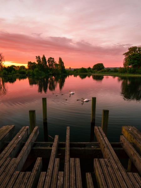 Commended Photo, 'Larbert Loch in the Summer', by Allan Johnston  ''I only just recently discovered this place existed after driving past it thousands of times for work. What a beautiful little loch with great wildlife''.