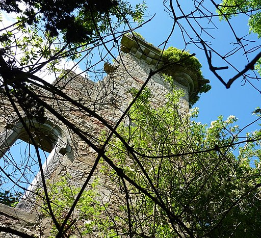 The Crosswell and Elphinstone Tower on Falkirk Explored