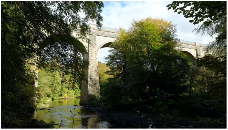 Glorious Gardens: Muiravonside Country Park